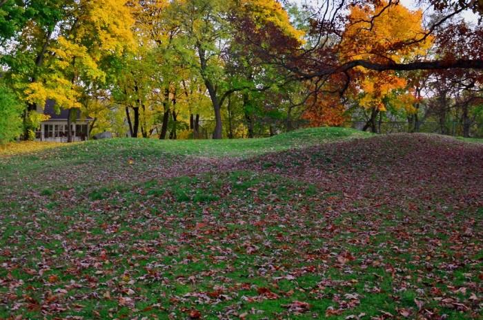 8. Vilas Effigy Mounds
