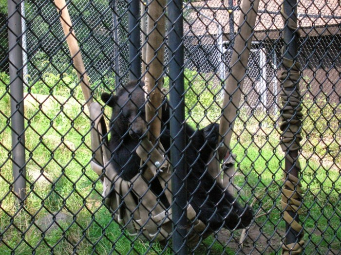 8. Oschner Park and Zoo