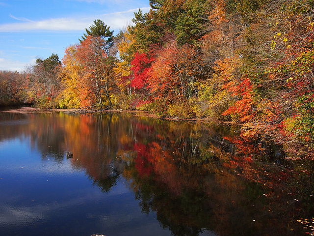 1. The vibrant colors of the leaves changing aside a lake in Burrillville are striking.