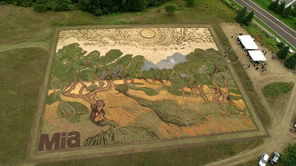 This Artist Created Van Gogh S Olive Trees In A Minnesota