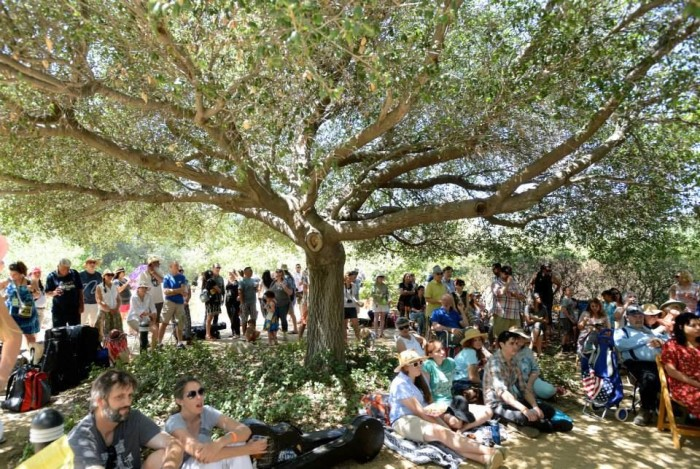 10. Claremont Folk Festival