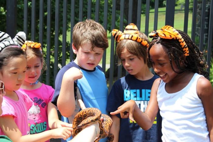 3. The Brandywine Zoo and Brandywine Park