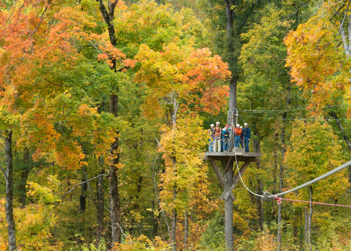1. Historic Banning Mills Zip Line Adventure Course