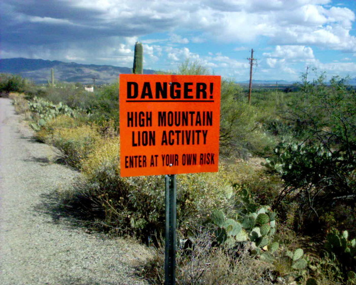 7. Mountain lions, javelinas, and bears, oh my! Abundant wildlife in rural and wilderness areas in the state means we (hopefully) know what to do when encountering a potentially dangerous animal.