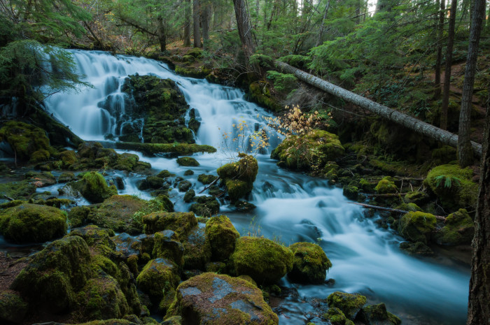 10. Pearsony Falls