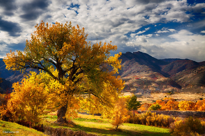 3. Get outside as much as humanly possible to enjoy the Colorado great outdoors.