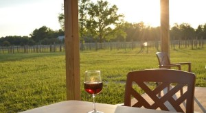 These 3 Beautiful Wineries In Delaware Are A Must See For Everyone