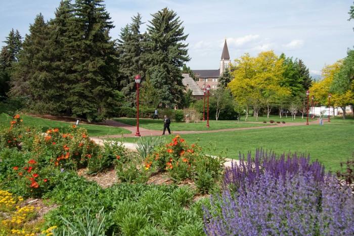 6.) University Hills