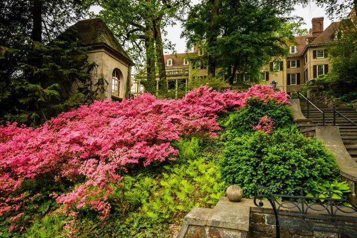 14. Winterthur Museum and Gardens