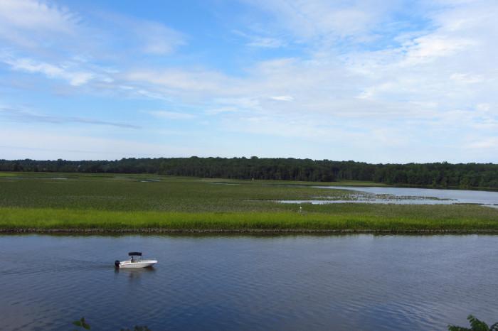 1. Jug Bay Wetlands Sanctuary, Lothian