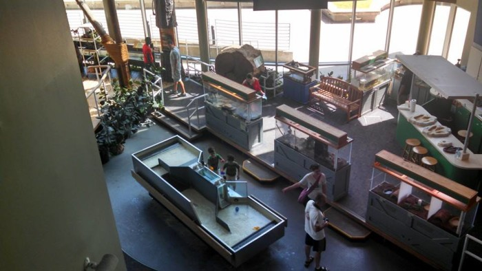 9. Visit the incredible Sci-Port: Louisiana's science center in Shreveport.
