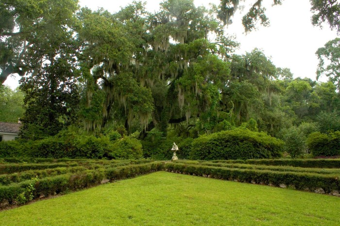 The gardens are one of the most striking aspects of the plantation, filled with azaleas, camellias, and some rare varieties of plants.