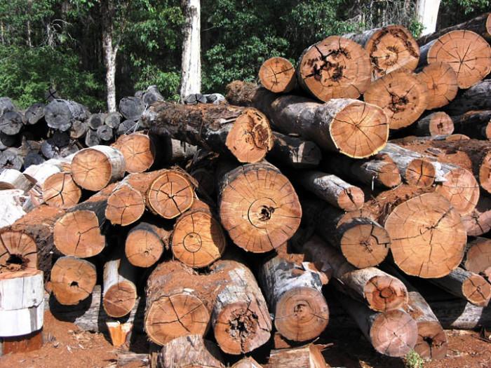 12.Lumber