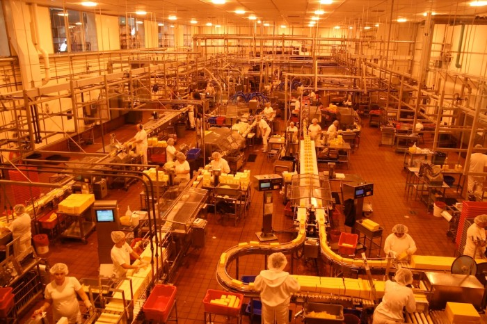 2. Wow. The Tillamook Cheese Factory produces 171,000 pounds of cheese each day.