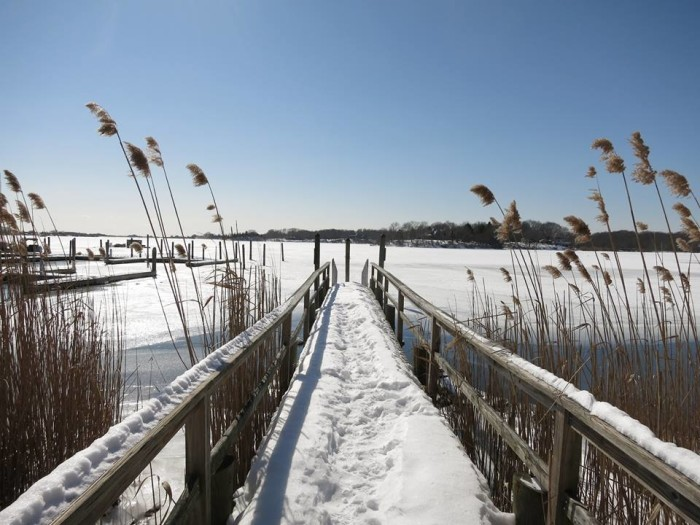 10. Ninigret Wildlife Refuge gives way to stunning shots in all seasons.