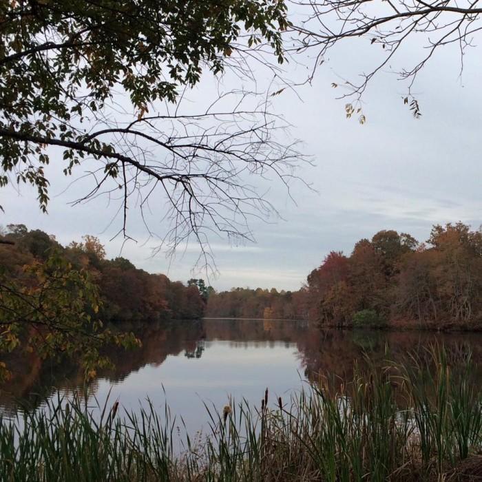 10. Quiet ponds