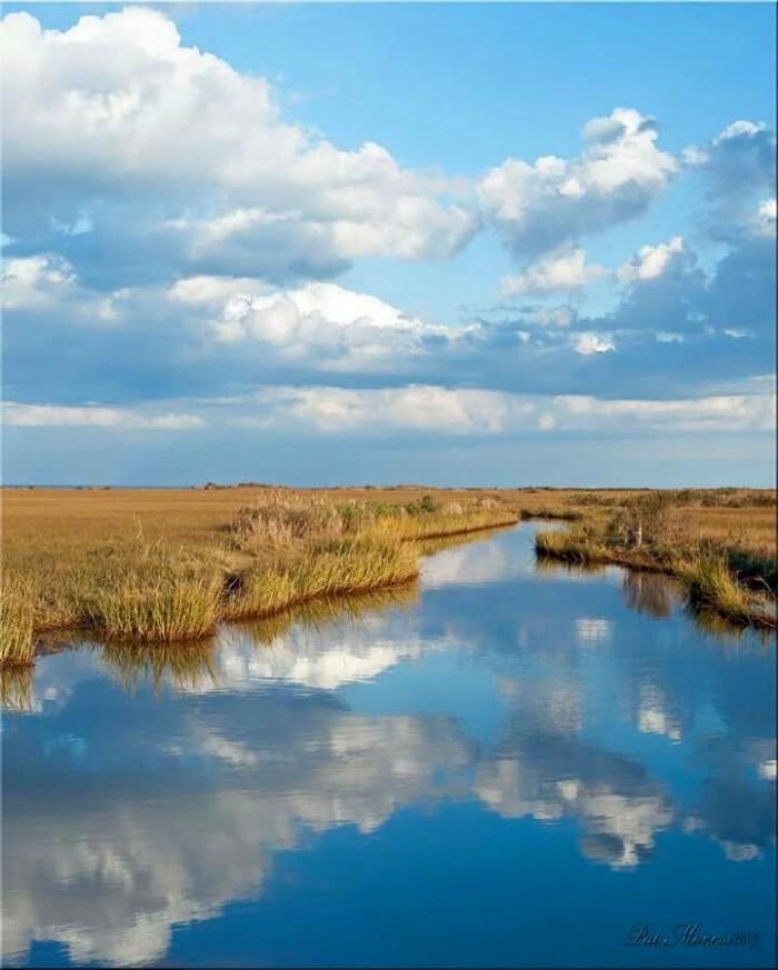 3. Expansive salt marshes