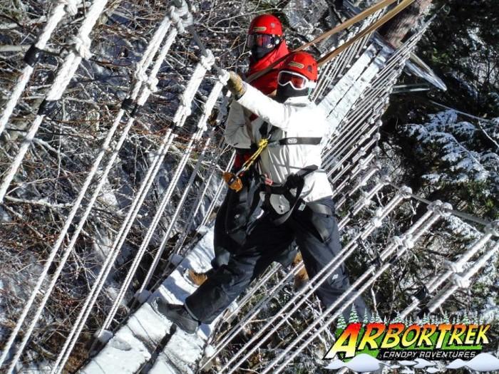 16.  Arbortrek Treetop obstacle course.