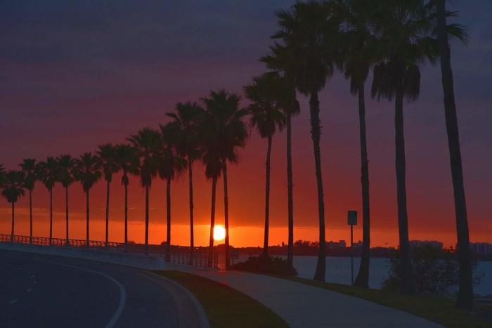 6. Sarasota