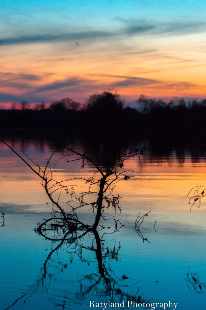 5. South Toledo Bend State Park, Anacoco