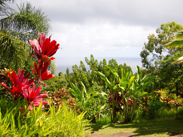 13. You can't forget about the magnificent Garden of Eden, a 26-acre botanical garden with beautiful lookout points, waterfalls, and a plethora of native Hawaiian plants.
