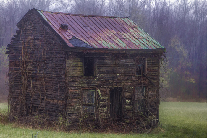 3. Abandoned houses are a common sight too.