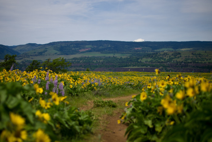 12. McCall Point Hike.