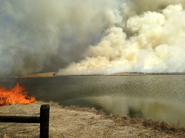wild fire smoke
