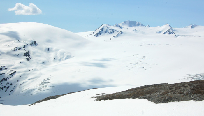 5. Harding Icefield Trail