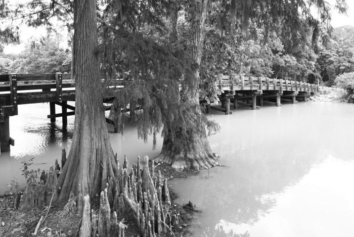 10. Lorrain Bridge