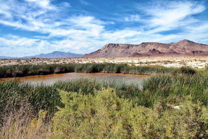 7. Black Rock Hot Spring in Gerlach, Nevada.