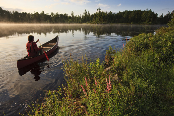 4. How relaxing does this canoe ride look?