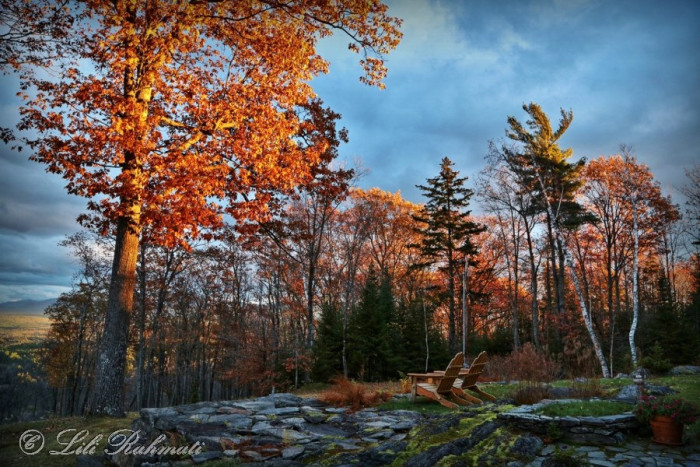 """9. In White Mountain National Forest, it is illegal for a person to pick up trash, build a bench, or otherwise """"maintain the national forest without a permit."""""""