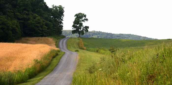 2. Gravel roads winding through the Shenandoah Valley