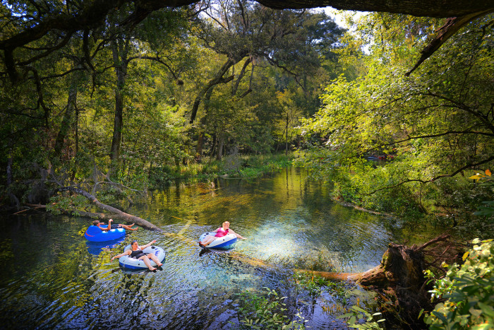 Get to Ichetucknee Springs by 8:00am to be there when it opens.