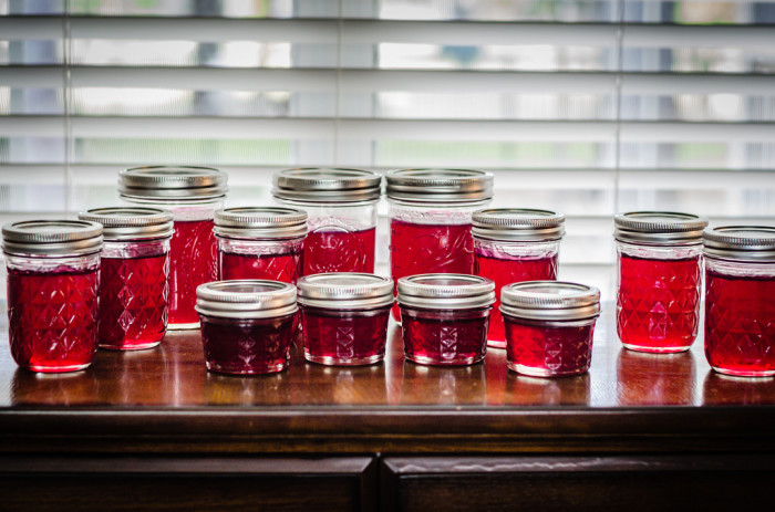 11. Prickly pear jelly
