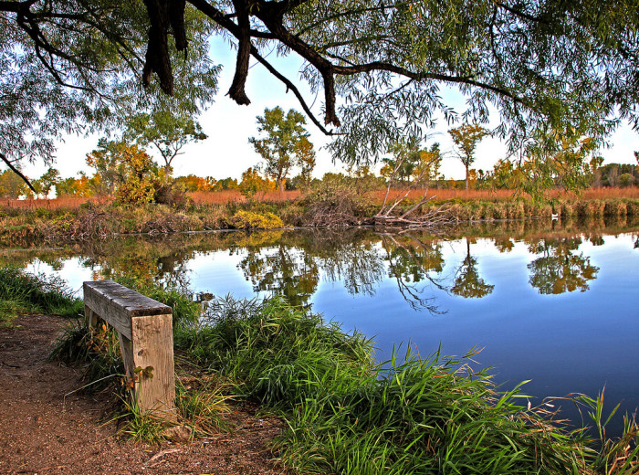7. ...state parks...