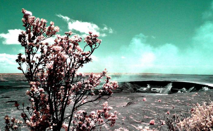 15. Explore Hawaii Volcanoes National Park.