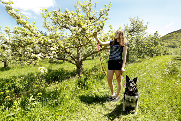 5. Bartlett's Apple Orchard in Richmond is a great spot for some playful shots of you and your pooch, or perhaps some of those quintessential couple photos. Aww.