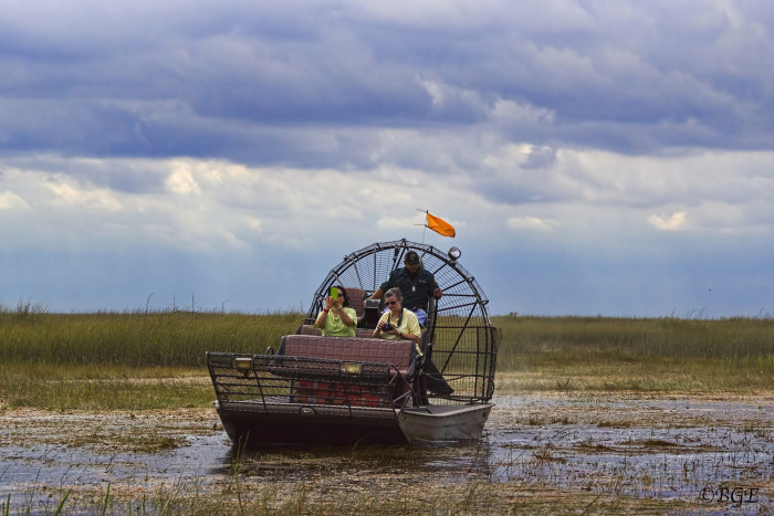 Time for an airboat ride through the Everglades.