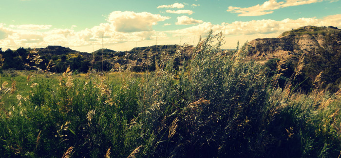 9. Theodore Roosevelt State Park, Medora