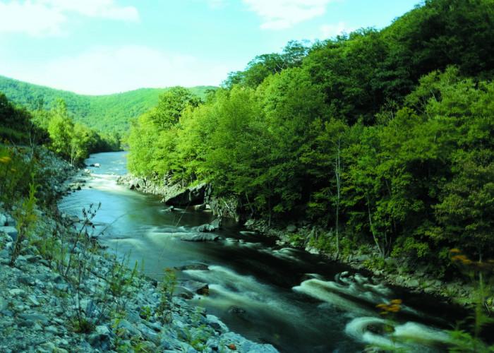 12. Saugus River