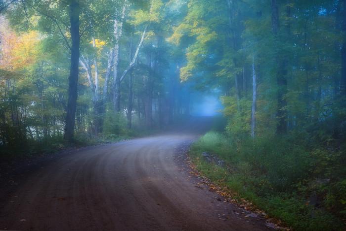 1.  Eerie fog.