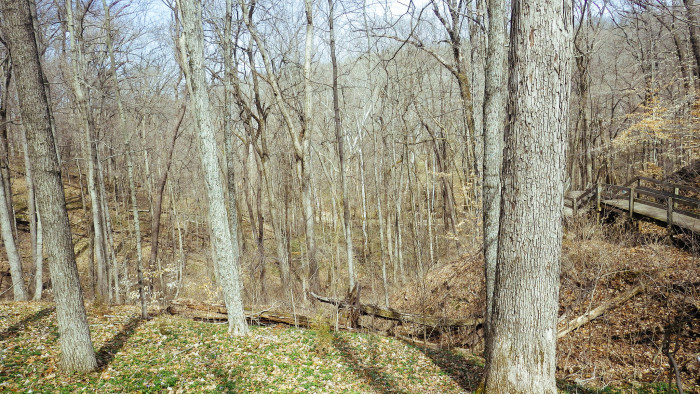 8. Spring Mill State Park