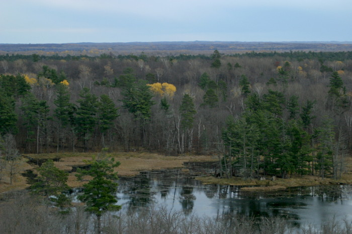 4. Itasca State Park