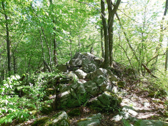 The trail to the summit begins in Eglon, West Virginia. The hike continues across the Maryland line.