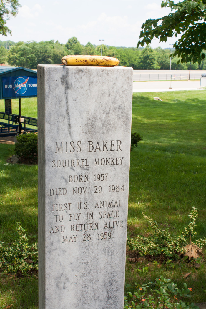 9. America's first space monkey, Miss Baker, is buried at this top tourist attraction.