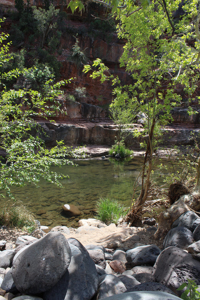 8. Cool off in one of Arizona's swimming holes, like Grasshopper Point in Oak Creek Canyon.