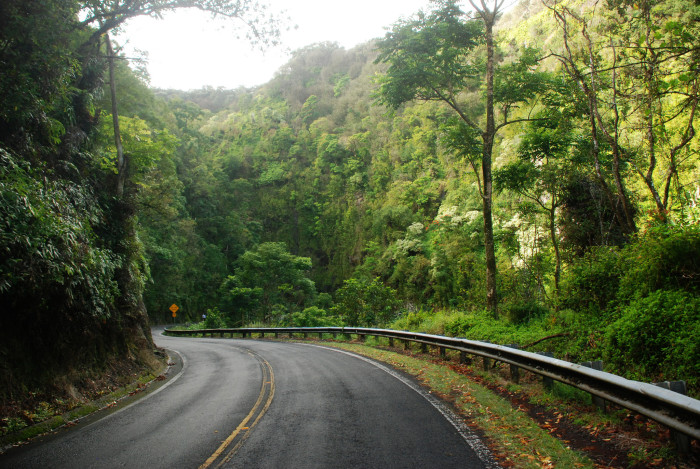 2. There are also approximately 620 curves through the lush, tropical jungle.