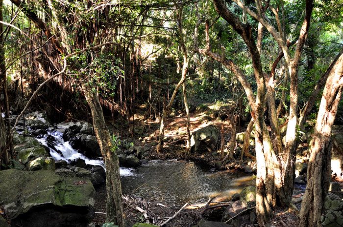 2. Kapena Falls